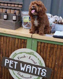 Dog on a Farm Stand Table